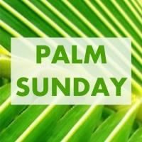 PALM SUNDAY sq